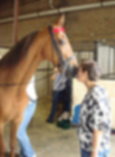 OB/GYN, Dr. Jenny Hackforth-Jones with her horse
