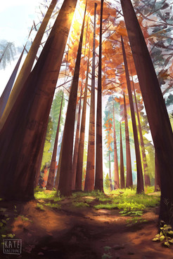Redwood Forest Background