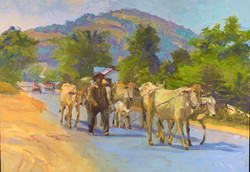 Off to the Pasture