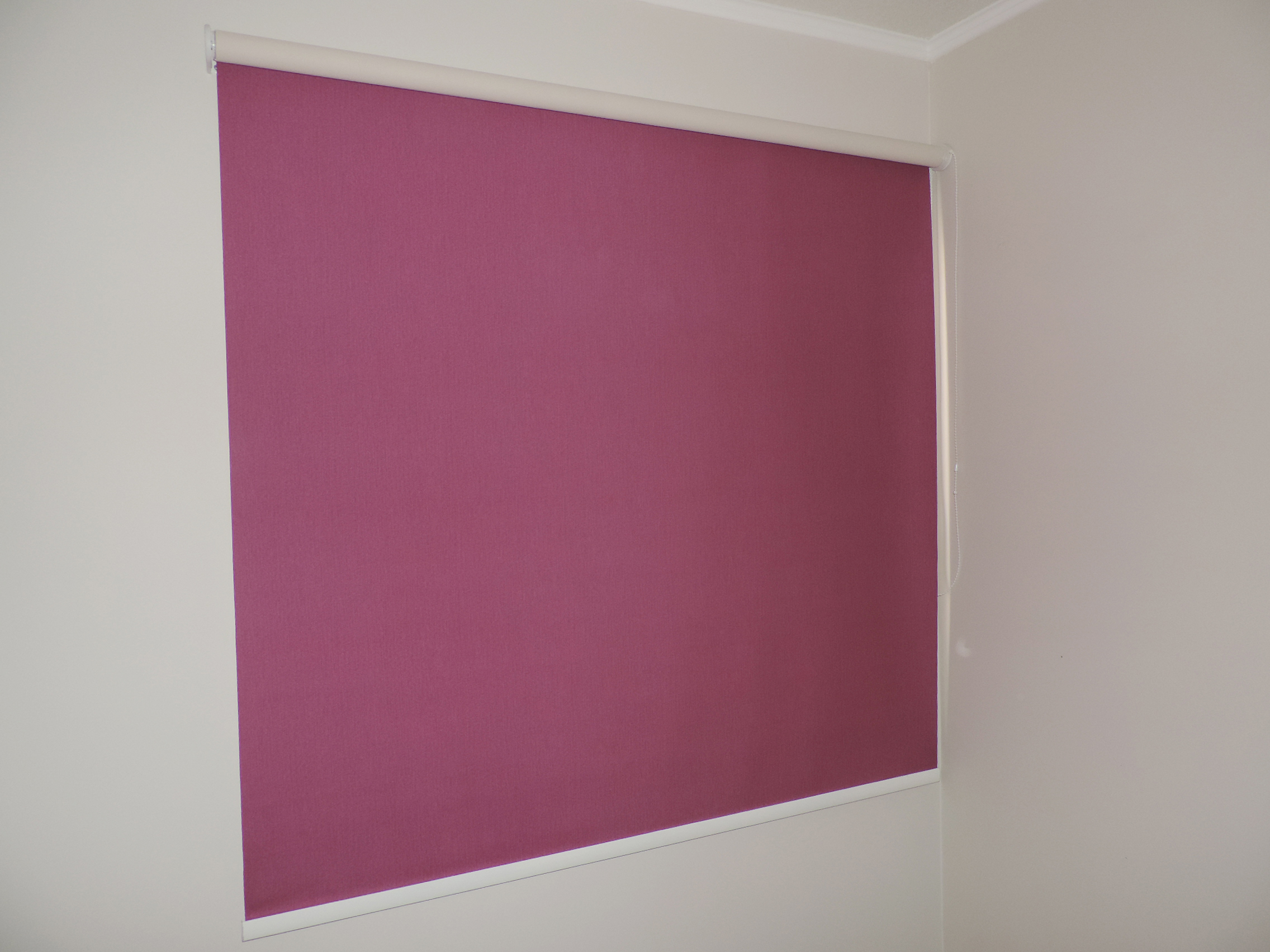 roller blackout fucsia