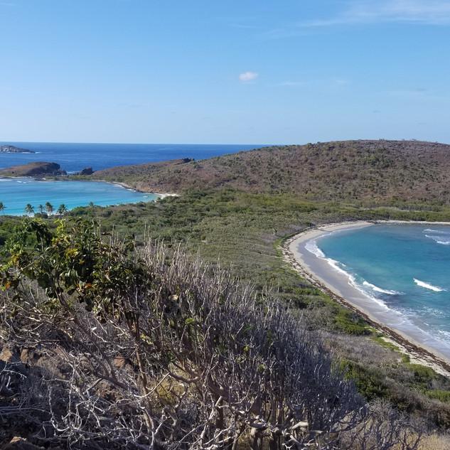 Culebrita Peninsula
