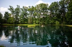 Pond scene at Breathe