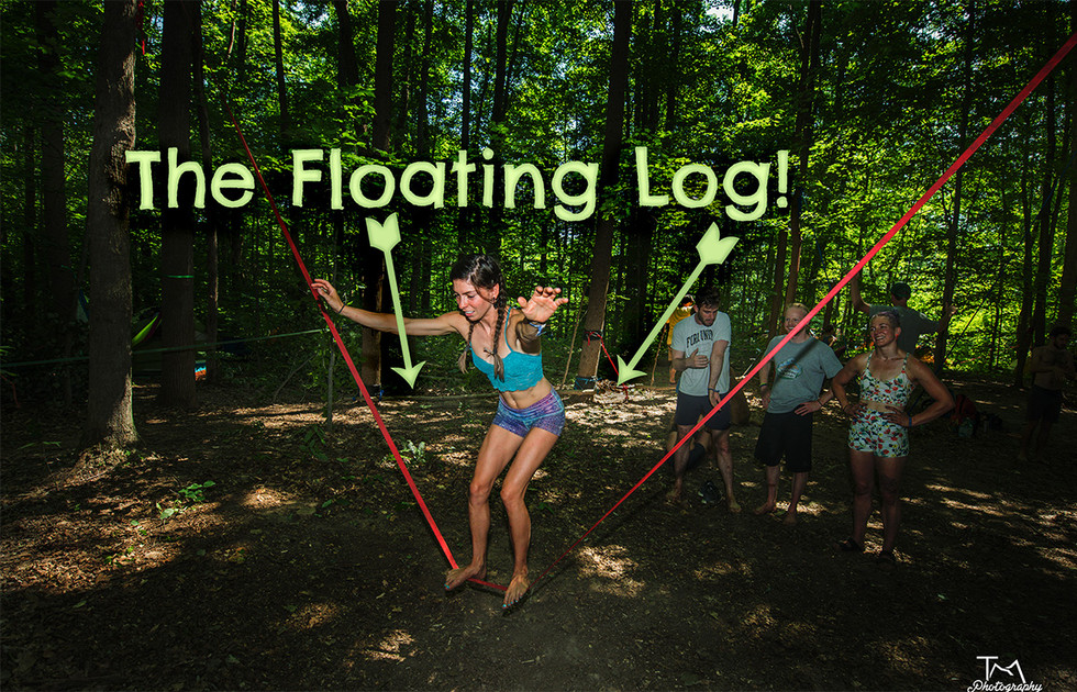 The Tale of the Floating Log