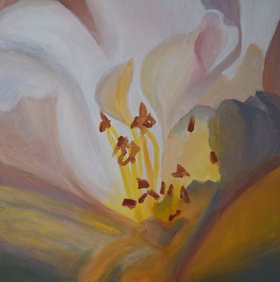 Inside an Apple Blossom