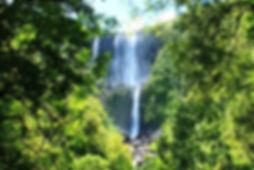 wairere-falls.jpg