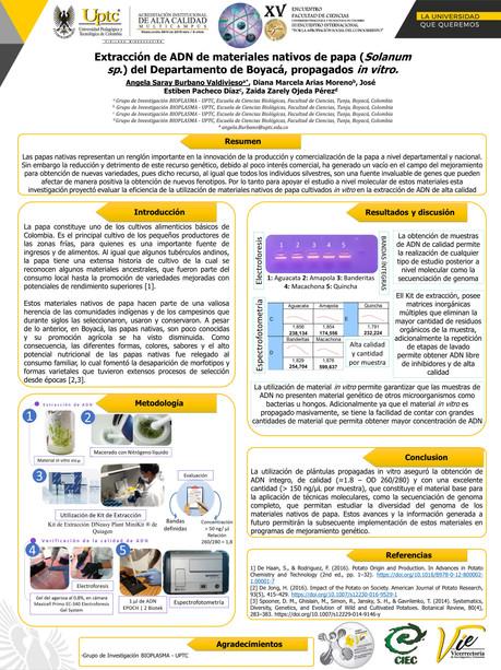 Extracción de ADN de materiales nativos de papa (Solanum sp.) propagados in vitro pertenecientes al Departamento de Boyacá
