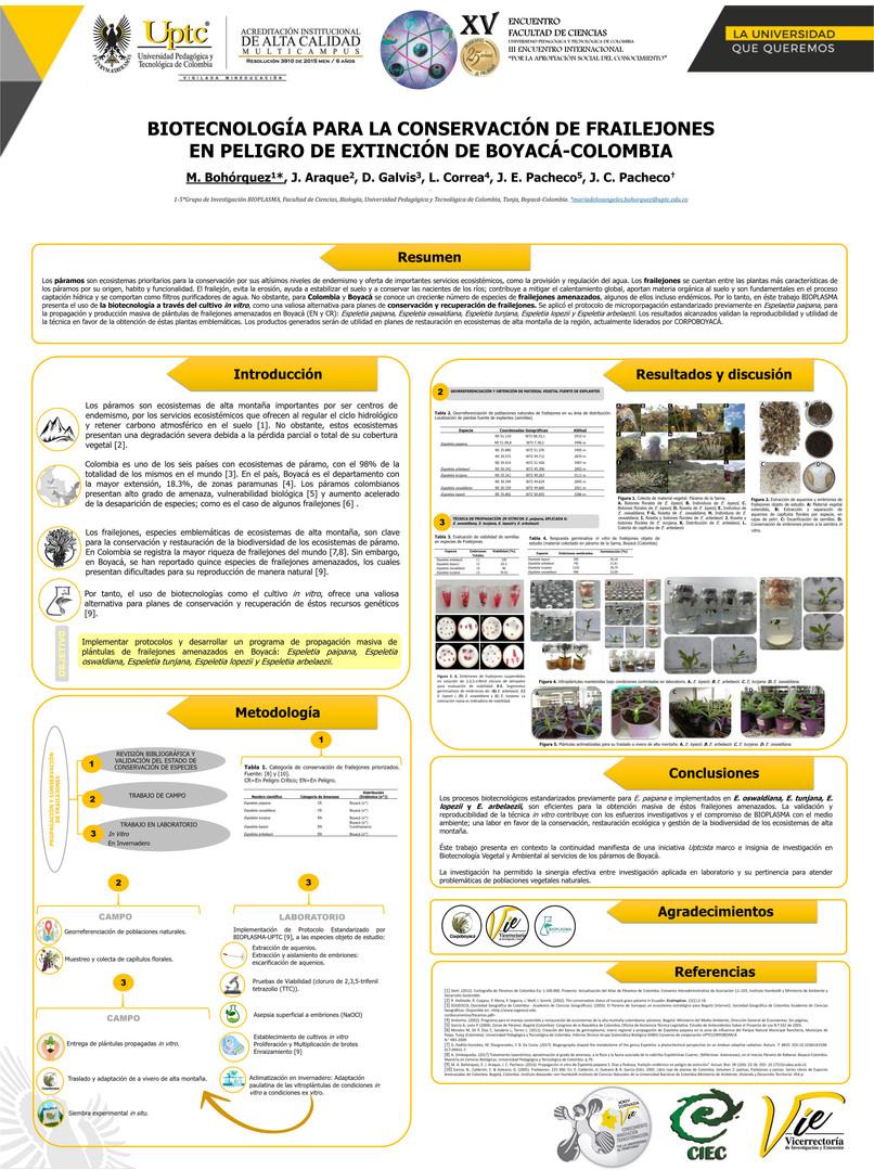 Biotecnología para la conservación de frailejones en peligro de extinción de Boyacá-Colombia