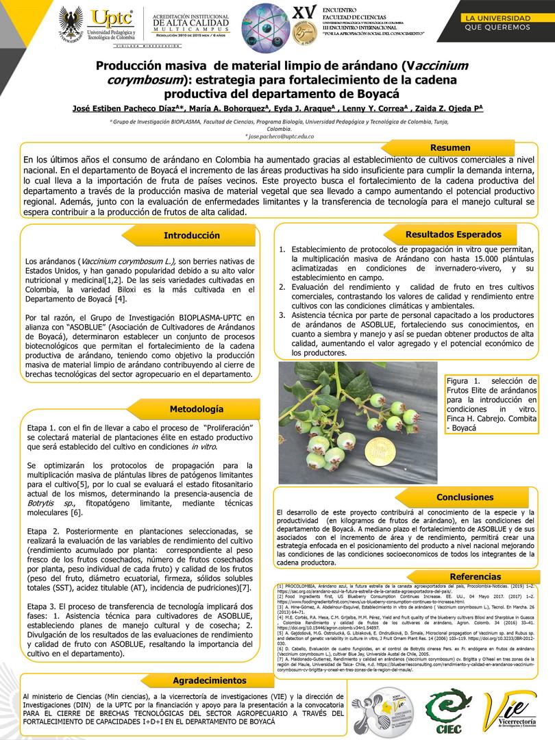 Produccion Masiva  De Material Limpio De Arándano (Vaccinium Corymbosum): Estrategia Para Fortalecimiento De La Cadena Productiva Del Departamento De Boyacá