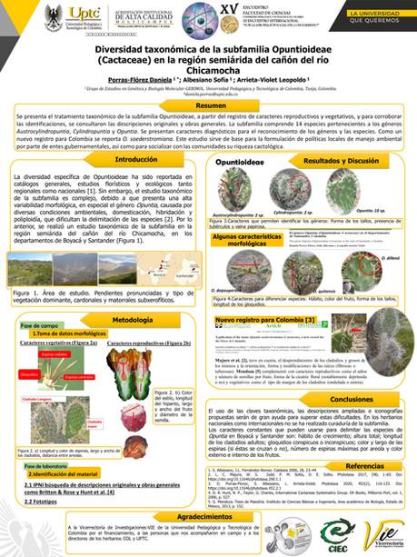 Diversidad taxonómica de la subfamilia Opuntioideae (Cactaceae) en la región semiárida del cañón del río Chicamocha