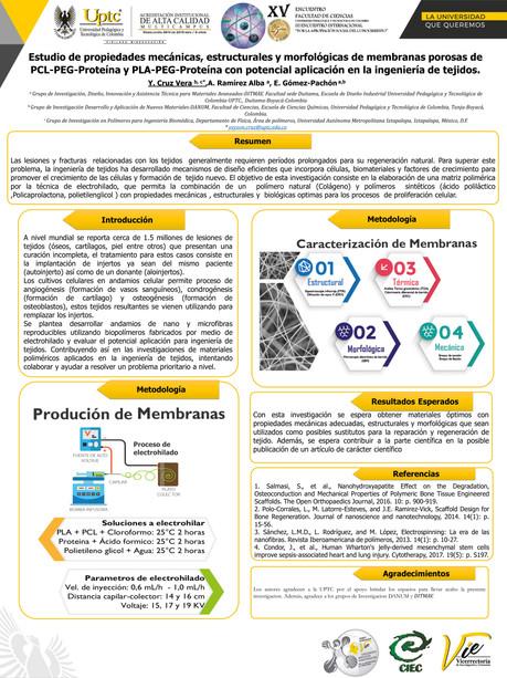 Estudio de propiedades mecánicas, estructurales y morfológicas de membranas porosas de PCL-PEG-Proteína y PLA-PEG-Proteína con potencial aplicación en la ingeniería de tejidos