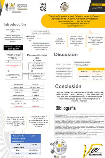 Trombocitopenia Inmune Primaria: a propósito de un caso y revisión de literatura