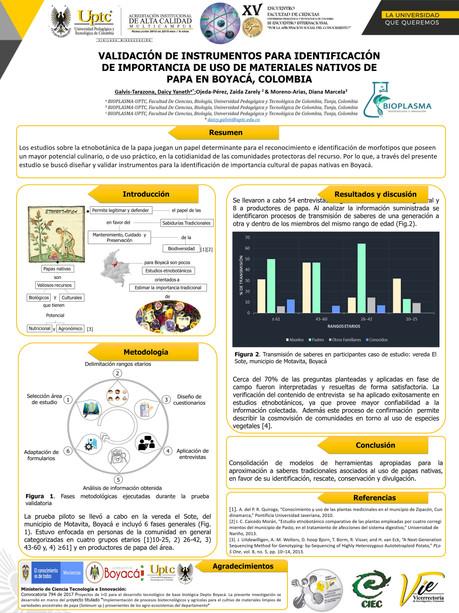 Validación de instrumentos para identificación de importancia de uso de materiales nativos de papa en Boyacá, Colombia