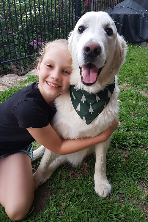 Adorable Dog Collar Bandana