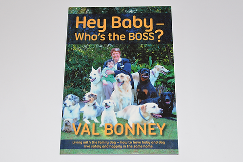 Hey Baby: Who's The Boss? Book