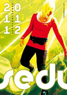 Sedun Vuosikertomus 2012