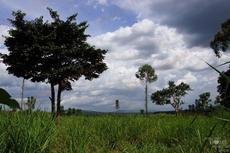 annemie___uganda__32_.jpg