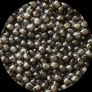 caviar-1.png