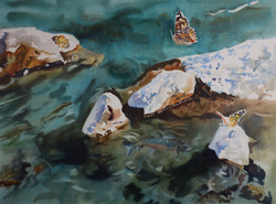 Painted Ladies and Fish