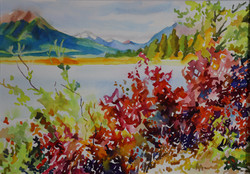 Red Leaves at Vermillion Lake