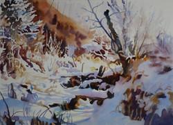 Near Moon Lake in Winter