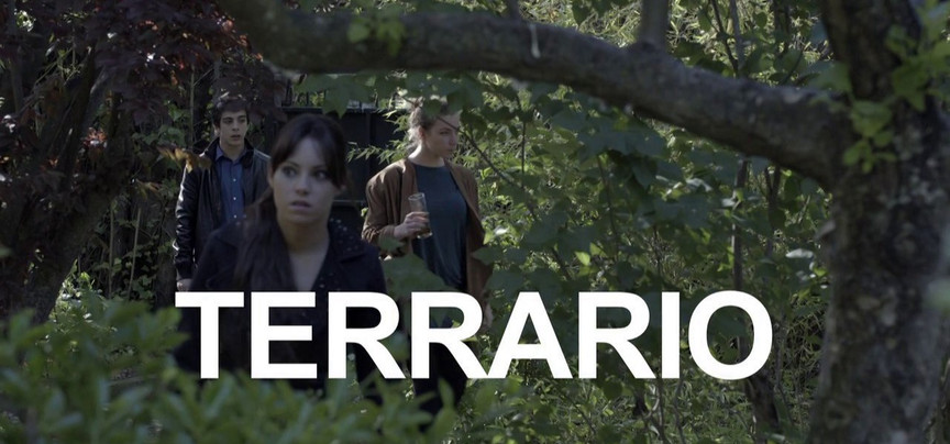 TERRARIO_01_edited.jpg