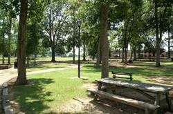Strawberry Patch Park