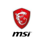 partners-msi.jpg