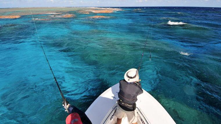 reef-post.jpg