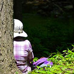 woman sitting by tree.jpg