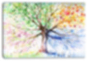 four seasons tree.jpg