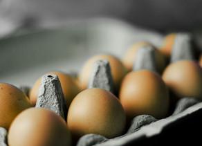 Comment bien choisir vos œufs  ?