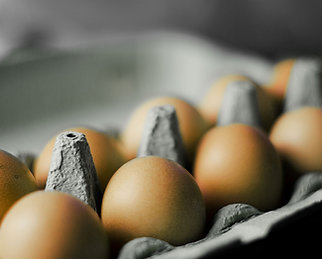 Dozen Farm Fresh Eggs- Free Range