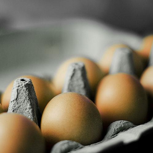 Free Range Eggs from