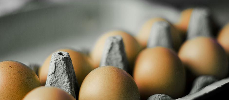 Egg: A Nutrients Power House