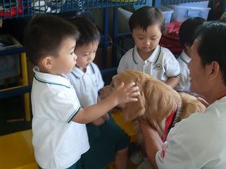 LN  Asian Dog Visit.jpg