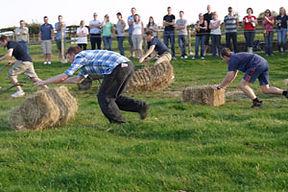 un team building di giochi in fattoria con i colleghi