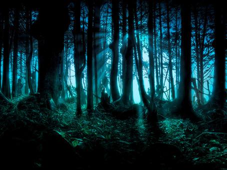 L'escape game si sposta nel bosco.