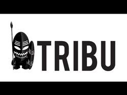tribù_building