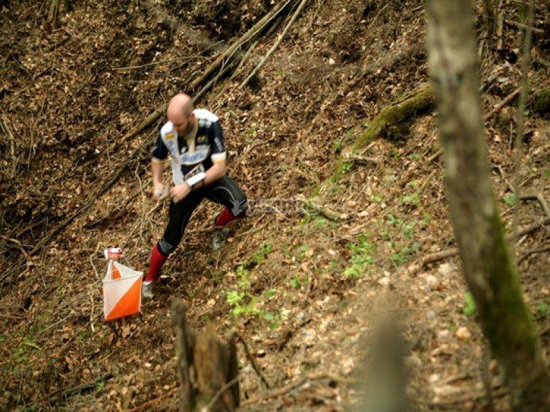 Team Building nel bosco