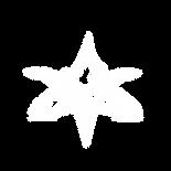 VMS_PATT_FLM_33black.png