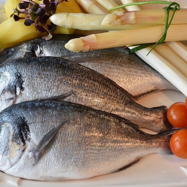 fish-2230852_1920.jpg