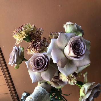 quicksand & carnations