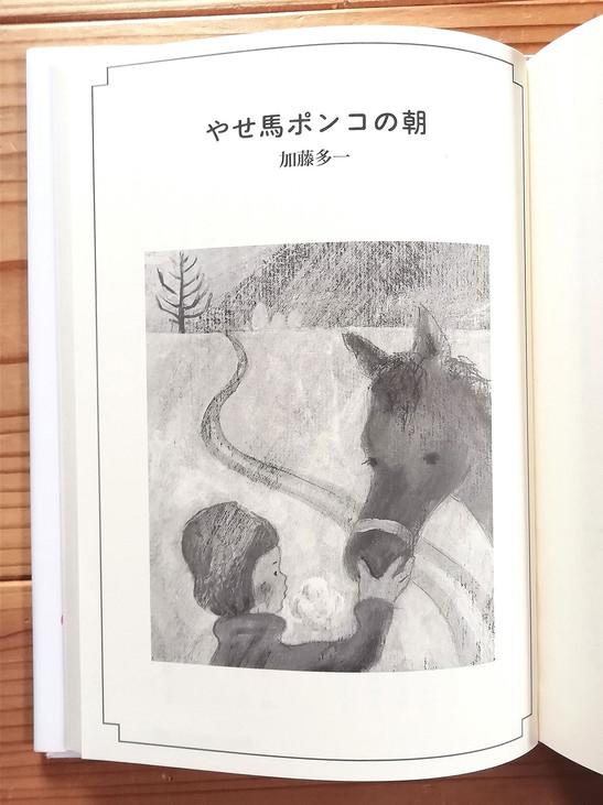 kanaweb_kasanomattahi_06.jpg