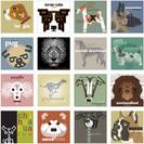 Alphabetic Pets