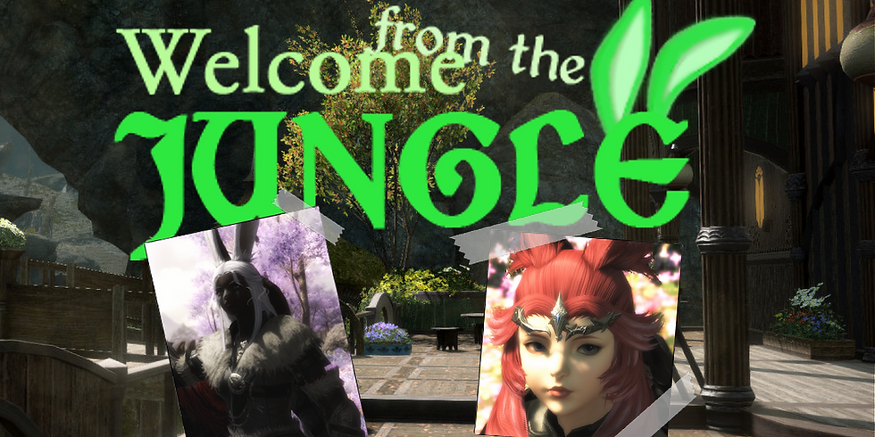Welcome from the Jungle