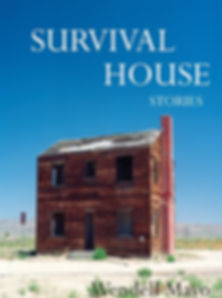 Cover of book Survival House by short story author Wendell Mayo