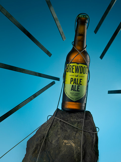 Brewdogs Pale Ale