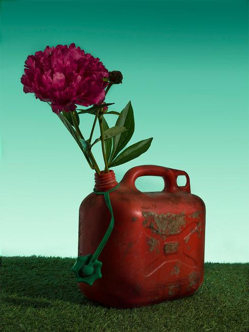 Flowertov.jpg