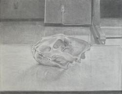 平成22年度 大人の写実絵画コース(夜間クラス)