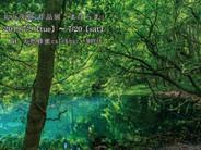 東京・池尻大橋「天然蜂蜜カフェ&バー MIEL」/アクリルキューブ写真展「まほらま」